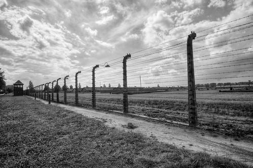 Outside Birkenau