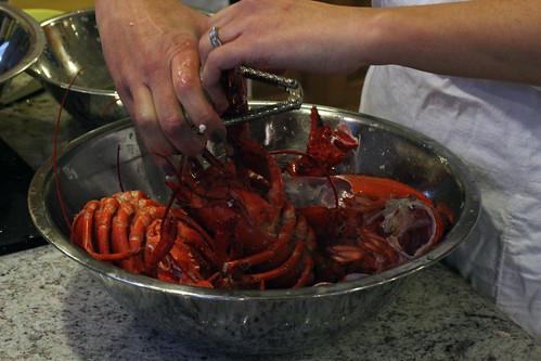 Dismembering lobster