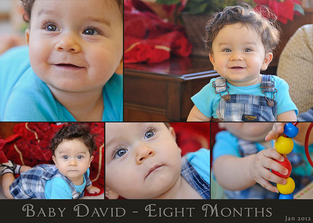 Baby David at Eight Months