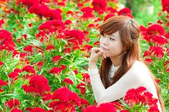 [フリー画像素材] 人物, 女性 - アジア, 頬杖, 人物 - 花・植物, ベトナム人 ID:201202231400