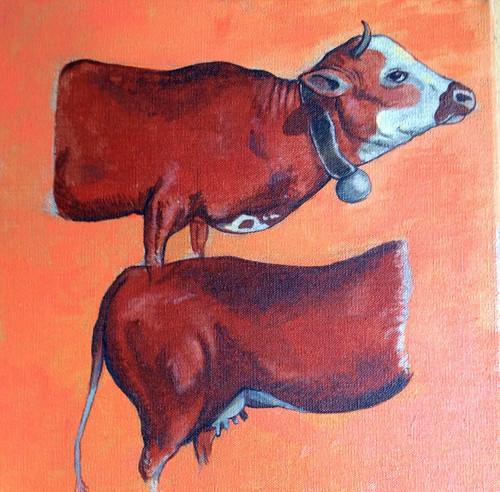 Deux demi vaches qui nous font une vache.
