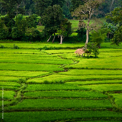 Sri Lanka - Southern Province