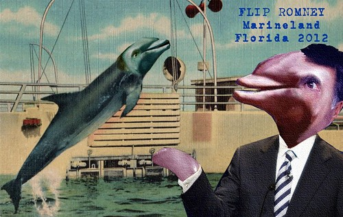 FLIP ROMNEY MARINELAND by Colonel Flick