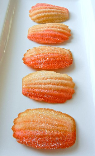 ombre madeleines