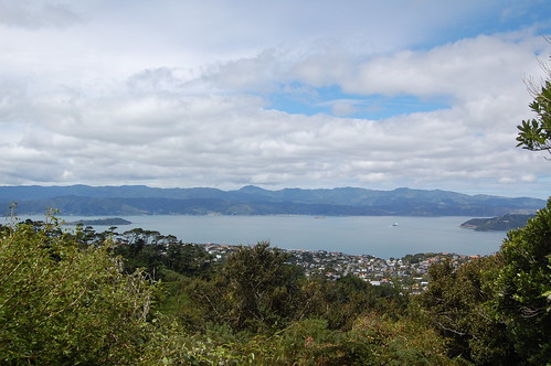 Wellington harbour from Mt Kaukau