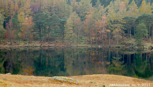 'Reflections on a lake' - Landscapes need to have depth to be effective. Layering them is the key.