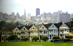 The 'Painted Ladies'