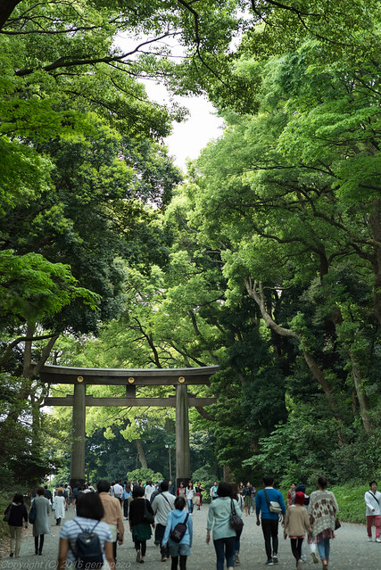 1st Torii of Meiji Shrine