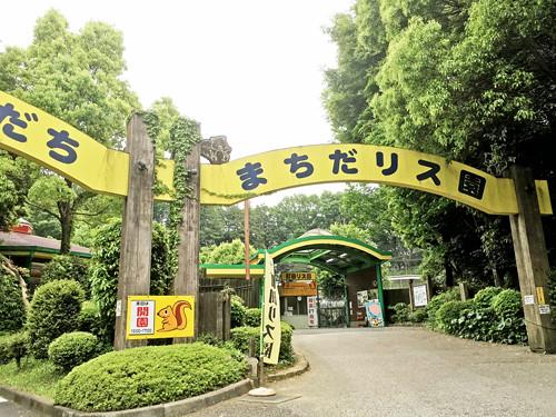 東京・町田リス園に行ってみました!の巻