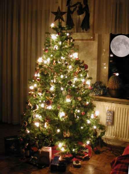 Abeto de Navidad Raboe