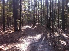 Boggy Creek Trail