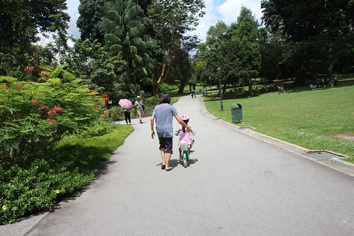 weekend cycling lesson at the botanic gardens