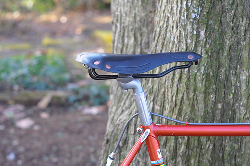 Testing a Selle Anatomica Titanico, New Version