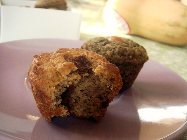 FiberScrumptious Muffin Review