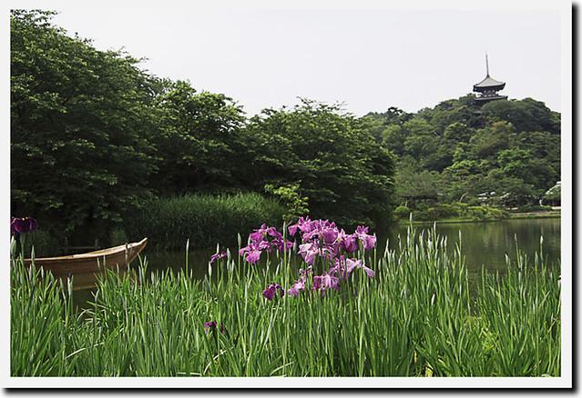 110605_092213_横浜_三渓園_s