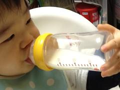 今日の片手哺乳瓶飲みとらちゃん(2011/11/30)