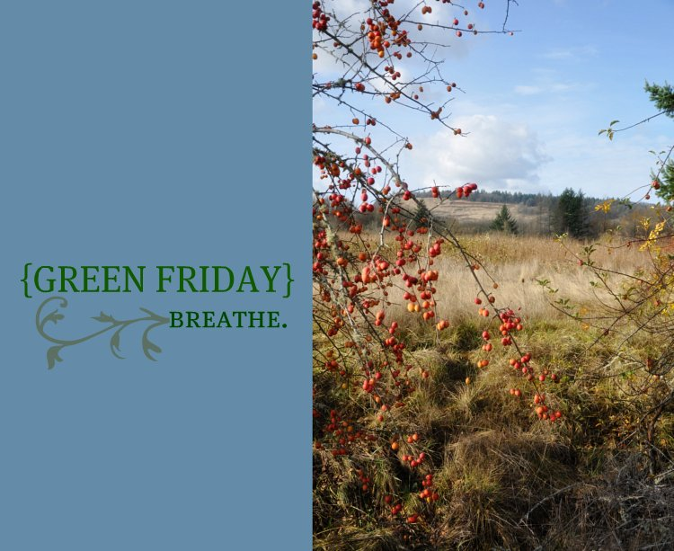 Green Friday. Breathe.
