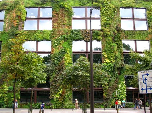 green-wall-source-inhabitat-com