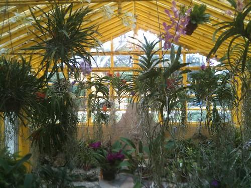 greenhouse at Bonnett