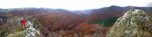 02650 055a062 Aizkorri. La cima del Arriona ofrece una de las mejores imágenes de bosques de hayas en otoño. Vista SUR hacia el bosque Urkilla. Josean Otxoa de Alda