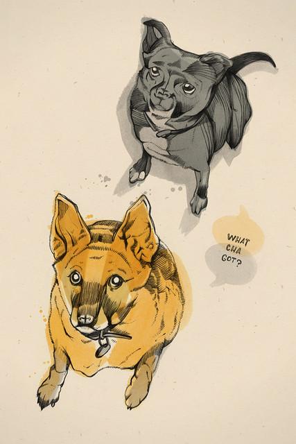 Stuey & Griffin