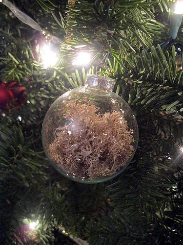 moss_ornament