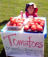 kid selling tomatoes (by: Liralen Li, creative commons license)