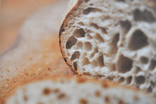 Foodie blog: Sourdough