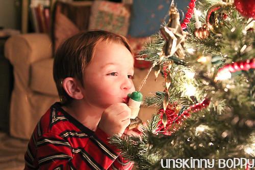 Christmas 2011 from UnskinnyBoppy.com (4 of 20)
