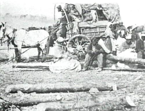 119. Wagon, Freedmen