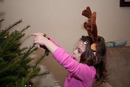 Nice antlers!