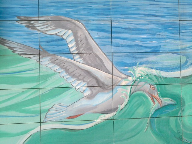 Seagull catching fish - Iron Cove Bay Walk Street Art