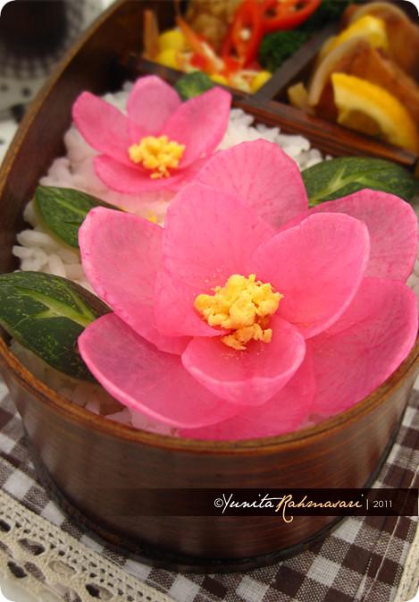 Blooming Pink Flower 2
