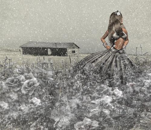 ranch snow home jessica secondlife wyoming defiant determinism jessicabelmer
