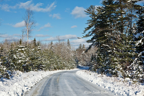 road trees winter sky white snow canada cold clouds forest landscape frozen woods day novascotia cloudy snowy country freezing sunny wellington grandlake getty winding slippery wooded kingsroad gettyimagescanada