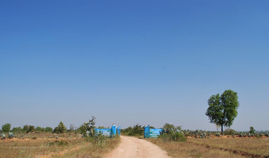 Jayamangali-Reserve