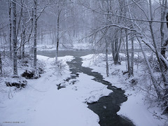 Snowy VT Creek into Mad River at Waitsfield