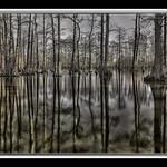 Horseshoe+Lake+Conservation+Area