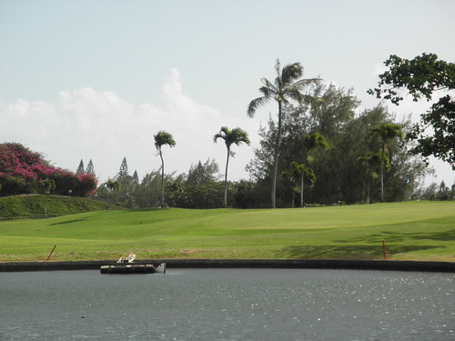 Hawaii Kai Golf Course 077