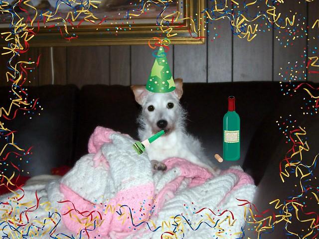 new year lola