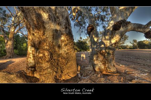 Silverton Creek