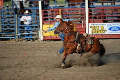team penning(0.0), western pleasure(0.0), barrel racing(0.0), animal sports(1.0), rodeo(1.0), western riding(1.0), event(1.0), equestrian sport(1.0), sports(1.0), charreada(1.0), reining(1.0),