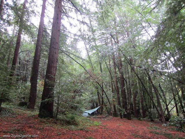 Pfeiffer Big Sur State Park, campsite