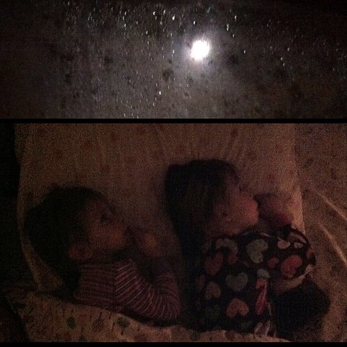 Moon watching out their window.