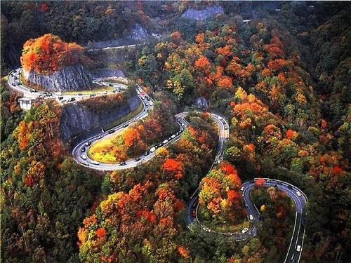 beautiful road_013
