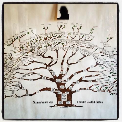 stammbaum familie von richthofen