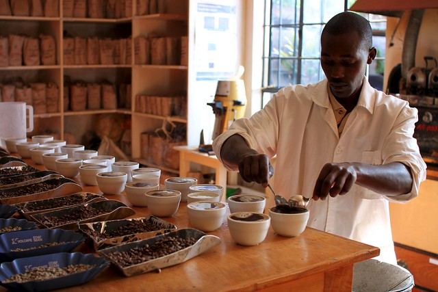 Cupping at Central Kenya Coffee Mill