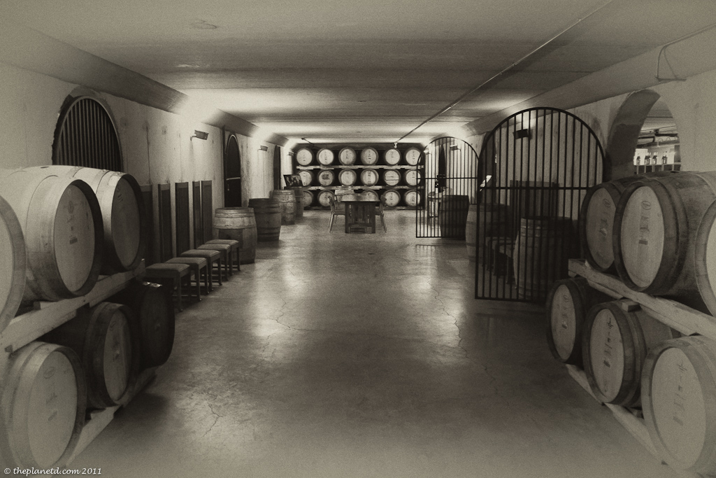 wine cellar of a winery in niagara canada