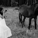 Fugitive bride by ggonz