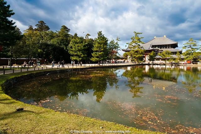 奈良公園 - 東大寺